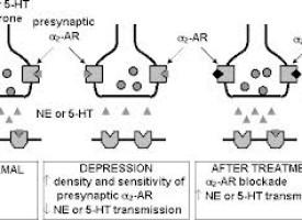 Cosa sono gli antidepressivi IMAO?