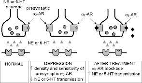 IMAO antidepressivi