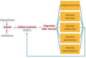 Reazione acuta da stress