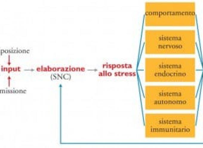 Disturbo Acuto da Stress o Reazione Acuta da Stress